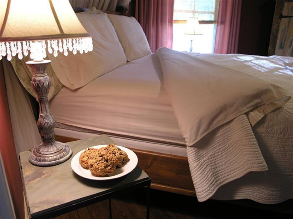 Dragonfly Cookies, Bedside - Food Gypsy