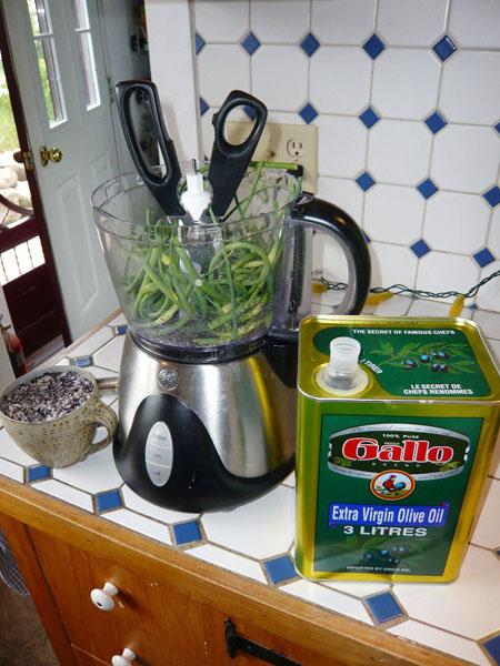 Dr. Kubie's Kitchen; making Scape Puree