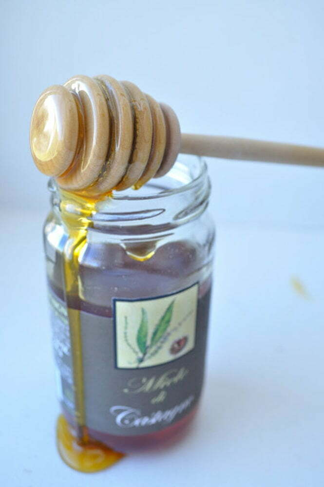 Chestnut Honey - Food Gypsy